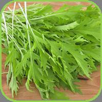 Oriental veg - Mizuna