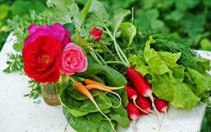 veg_flower