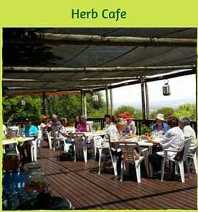 Herb Cafe Deck Area