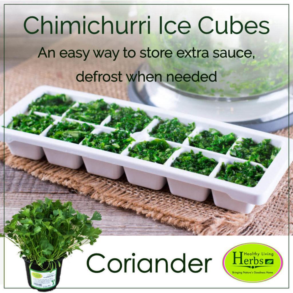 Chimichurri Ice Cibes
